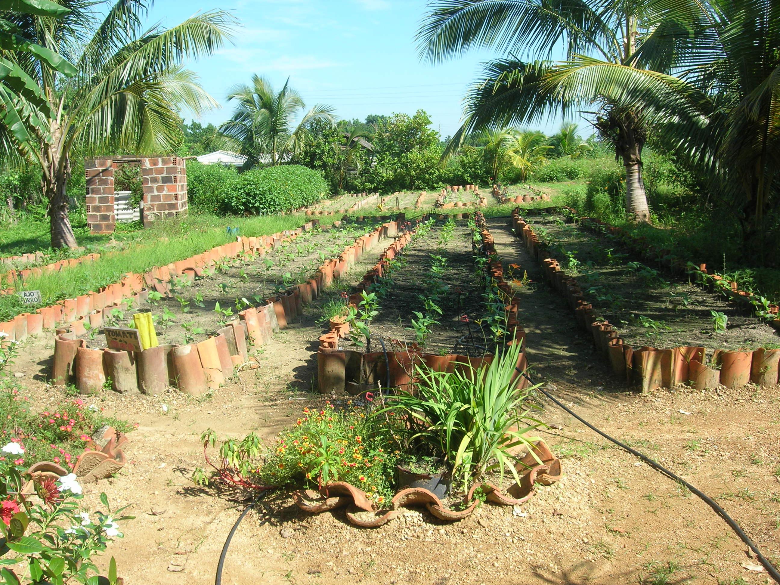 Cuba Day Six Back To Havana By Way Of The Secret Garden